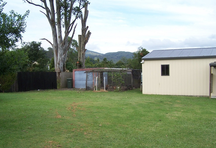 Shed and chook pen